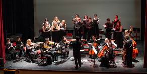 Annual Fund for Chamber Orchestra