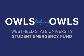 Owls Helping Owls