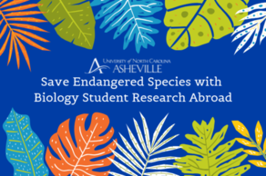 UNC Asheville Biology Student Research Abroad
