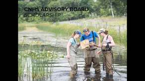 CNHS Advisory Board Scholarship Campaign Image